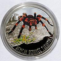 Mexican redknee tarantula [Brachypelma smithi] minted on a one dollar silver coin - Country of Niue