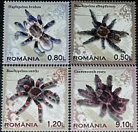 Tarantula stamps issued in Romania
